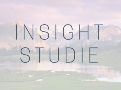 Insight studie